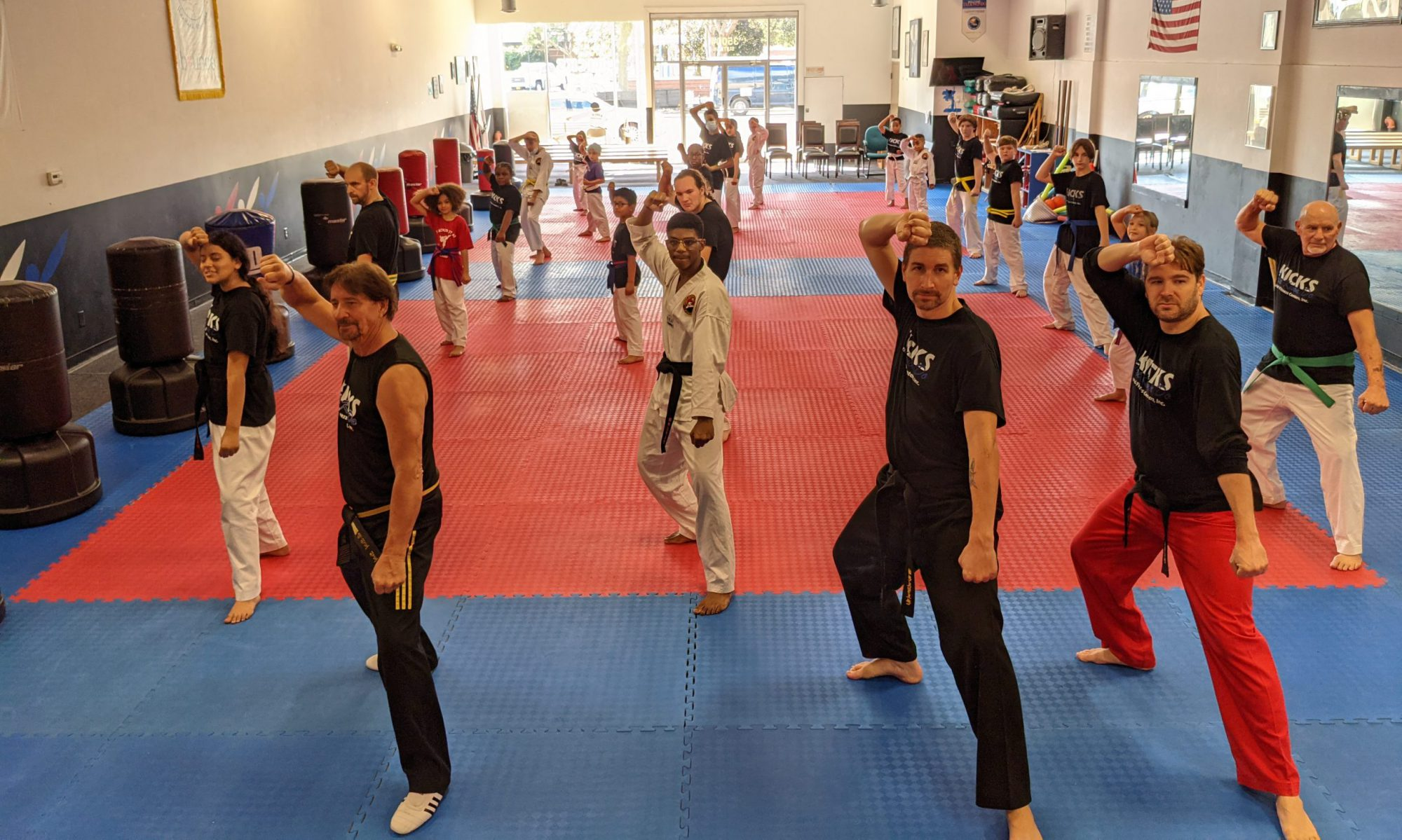 Kicks Taekwondo and Fitness Centers